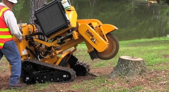 stump grinding during tree removal