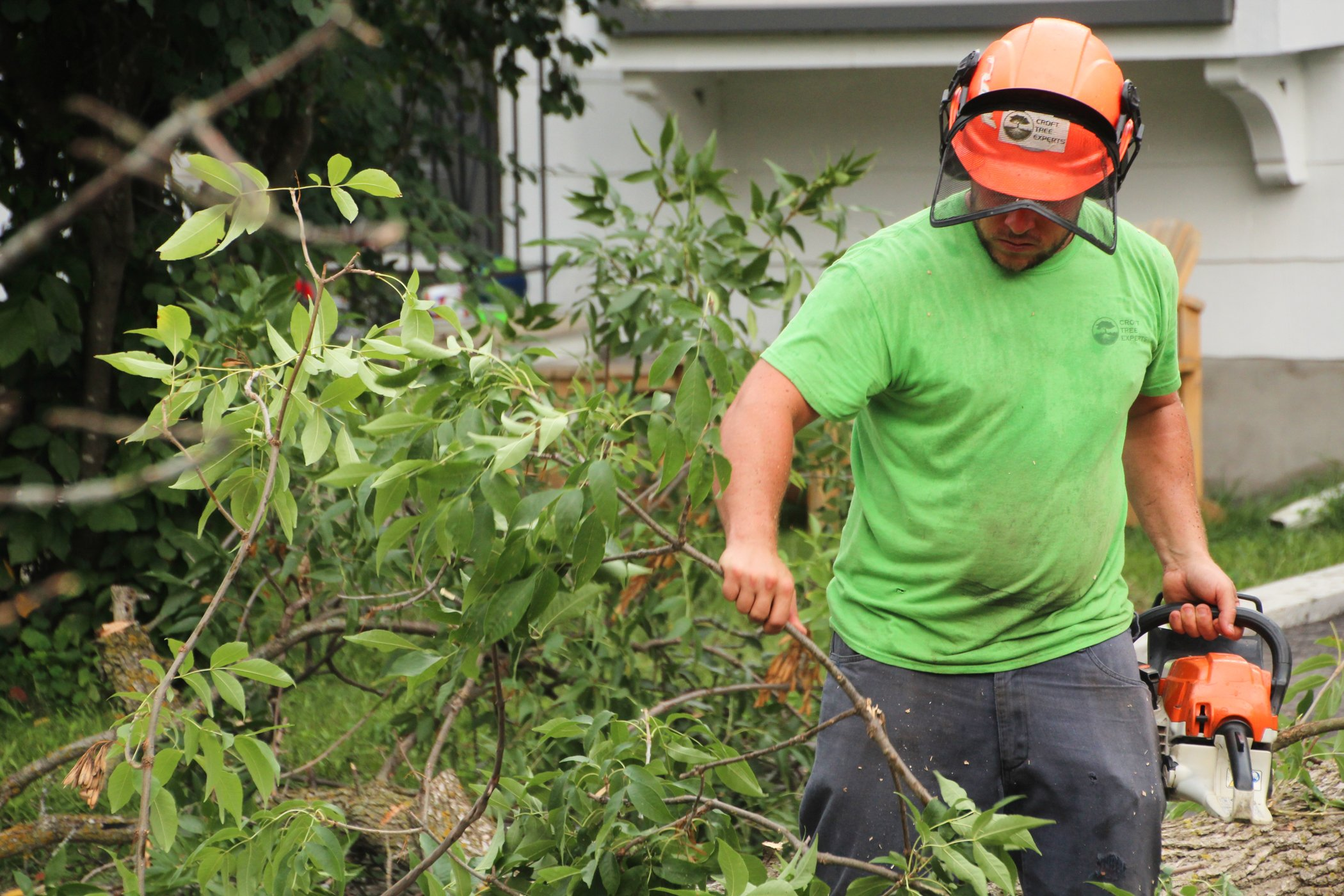 Tree Removal Expert Taking Unwanted Branch Away From Property