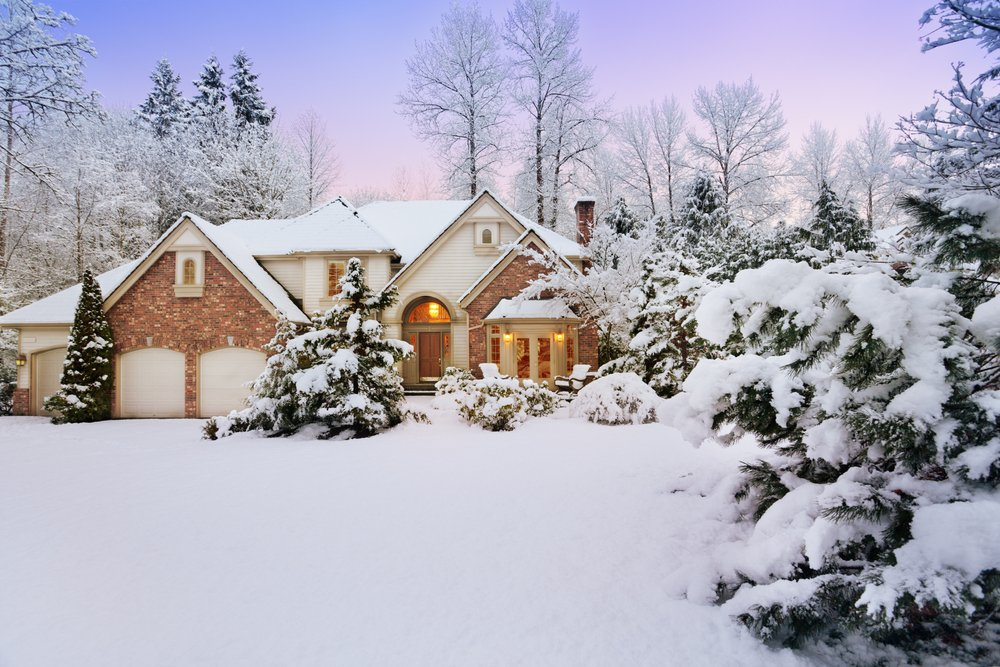 house with trees in snow