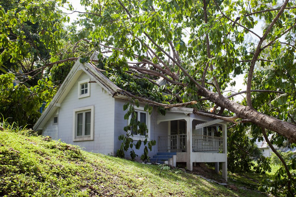 storm damage that resulted in a tree falling on a home