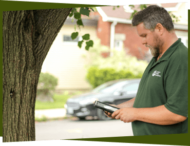 Certified arborist during an inspection.