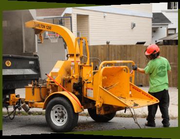 Arborist using a wood chipper in Ottawa.