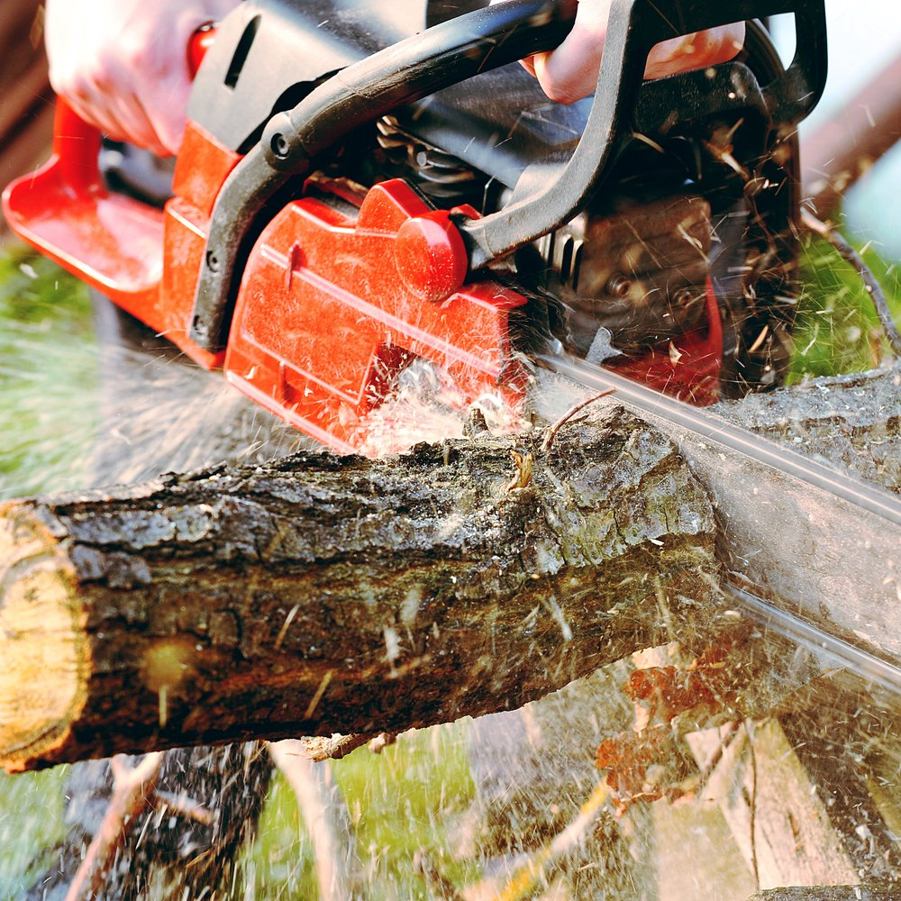 homeowner with chainsaw removing tree