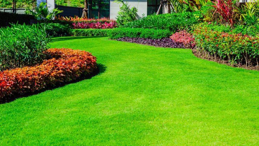Beautiful backyard gardens with lush green grass.