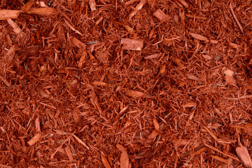 mulch in ottawa yard