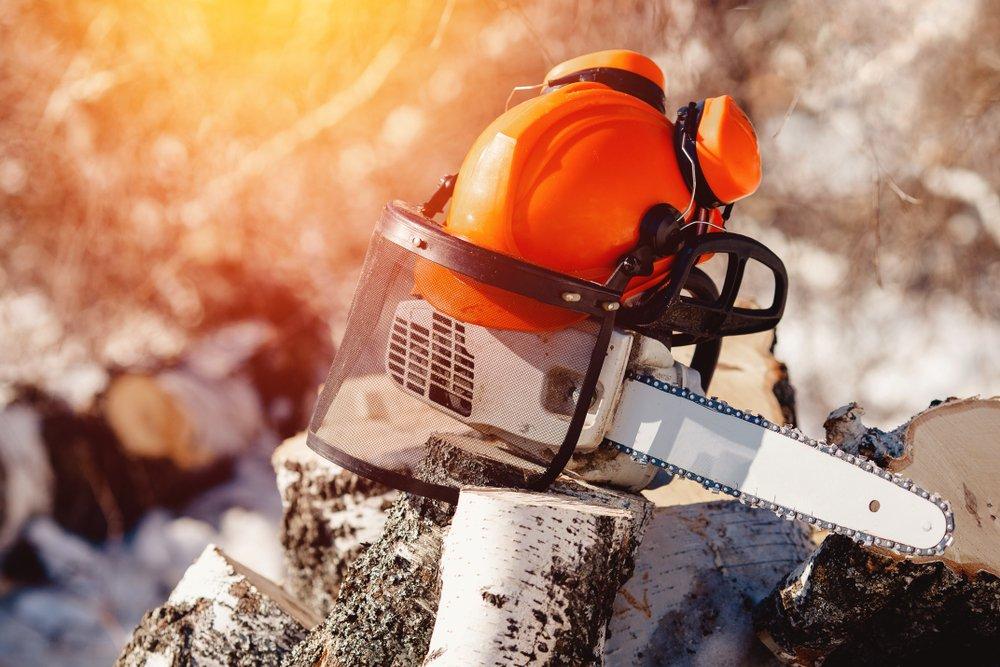 ottawa arborist's safety equipment