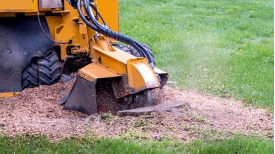 stump removal machine